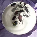 Pamela-Holstein-beetle-bowl